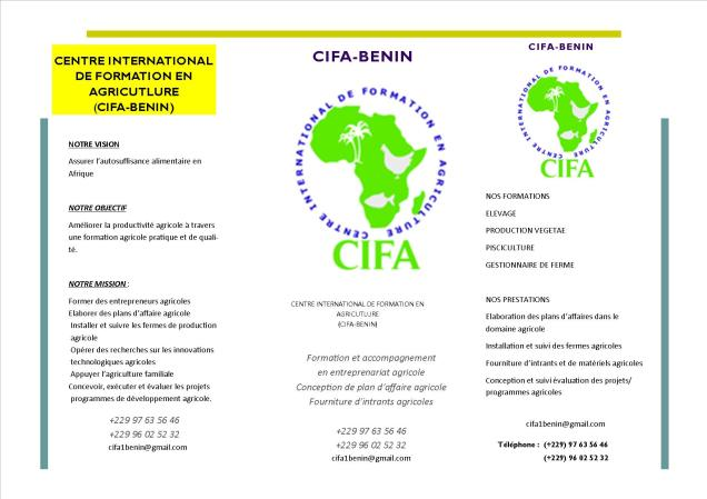 CIFA-B2nin