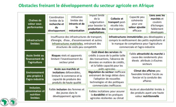obstacle-freinant-le-developpement-du-secteur-agricole-en-afrique