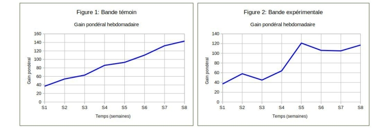 graphes: gain pondéral hebdomadaire des poussins